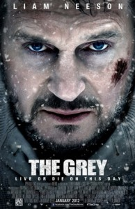 The_Grey_Poster